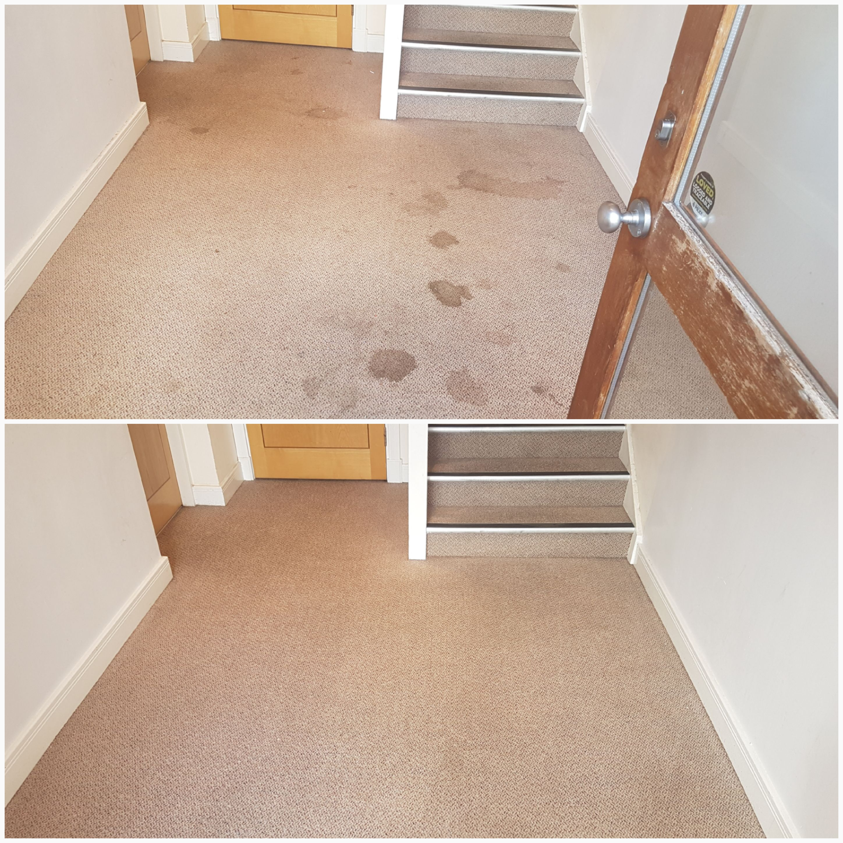 quality design c733b 58a2a Carpet Cleaners Doncaster